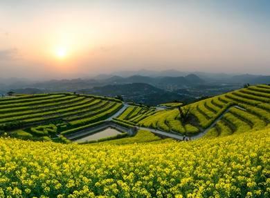 【爱摄旅游】富阳黑山顶 油菜花海 1天摄影创作团