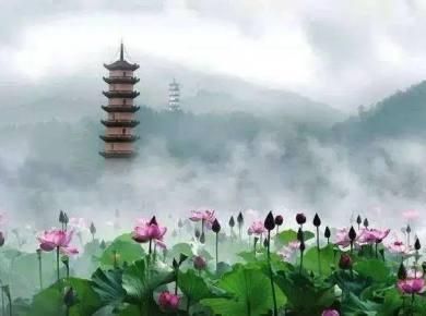 【爱摄旅游】06.17-06.18 宣莲花语·清凉武义2天1晚摄影采风团