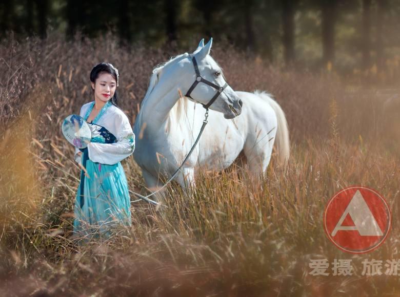 """""""走进庄园 与马相会"""" 亲近自然,体验贵族生活"""