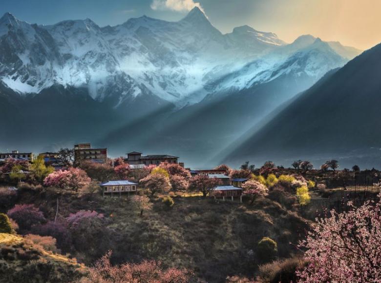 03.23--03.30西藏·林芝桃花节8天7晚摄影创作团
